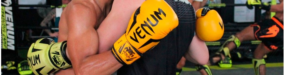 Guantes (Kickboxing, Thai, MMA, Boxeo)